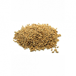 Pale Wheat Malt