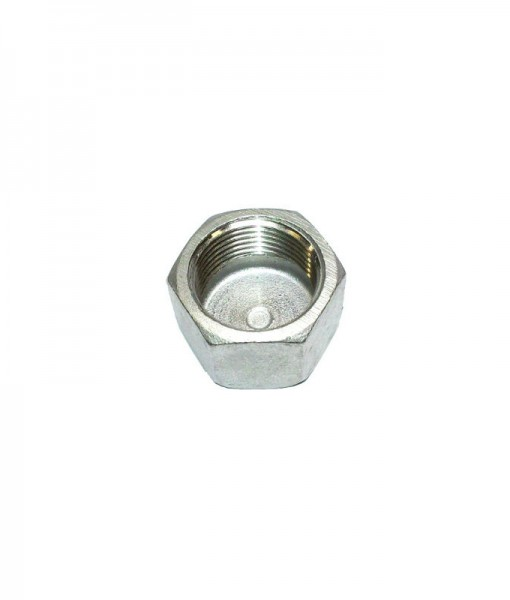 Stainless Steel BSP Hex Cap