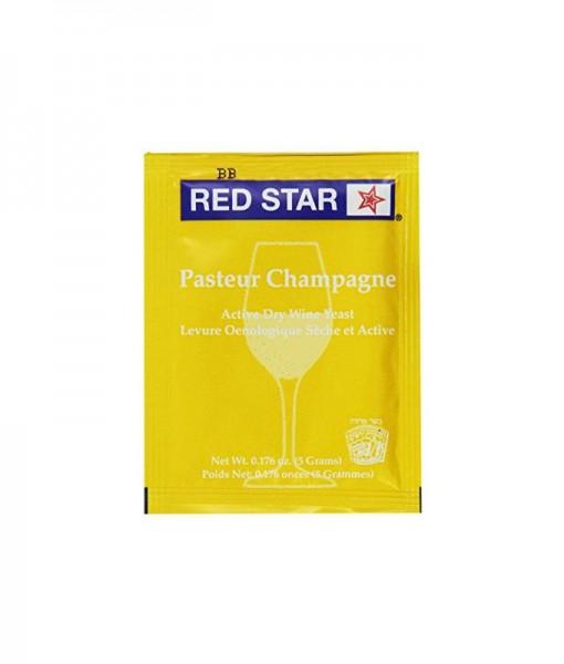 champagne yeast